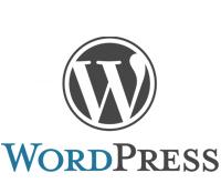 создание, разработка веб сайтов на WordPress под ключ недорого, дешево