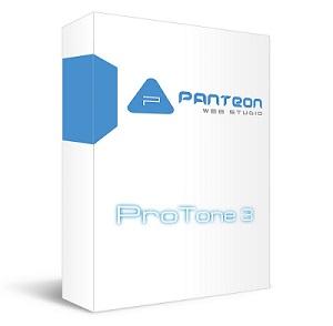 PWS ProTone 3. Интернет-бизнес